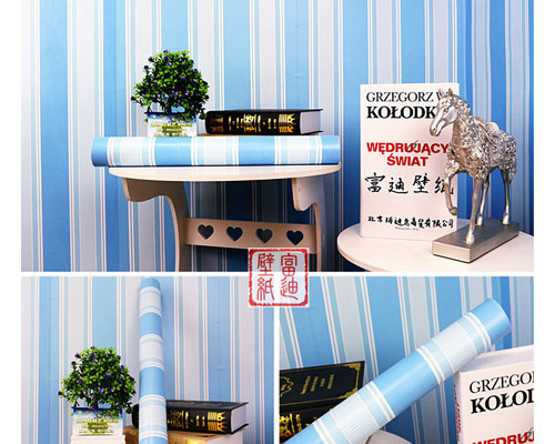Wall Paper Sticker 10M - 5083