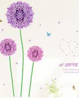 STC001_AM7019_01.jpg