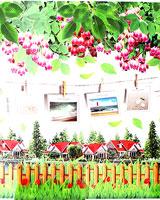 STC038_SAA8080_01.jpg